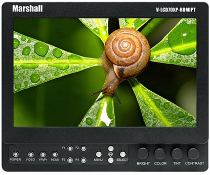 Изображение Marshall 7-inch High Resolution HDMI Monitor with Loop-Through